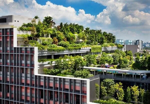 WOHA-kampung-singapore-1